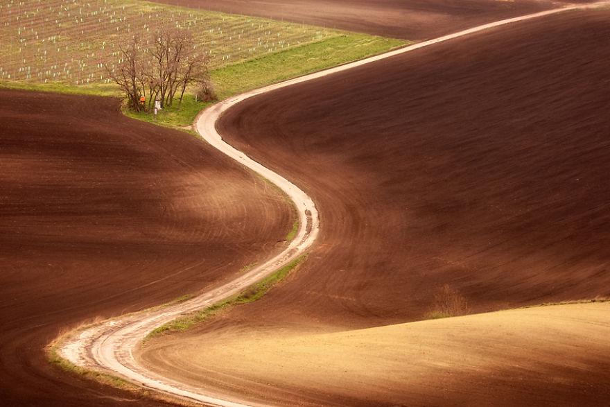 Moravian-fields-3__880