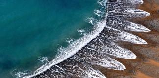ayçiçeği dalgalar