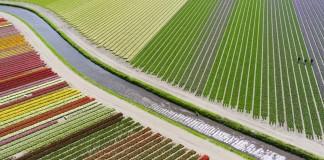 en iyi drone fotoğrafları