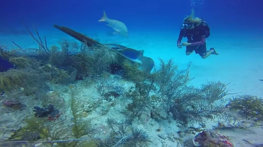 mercan kayalıkları