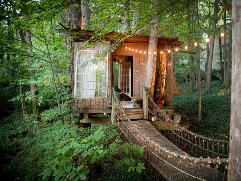 en-iyi-agac-evler-airbnben-iyi-agac-evler1_800x600
