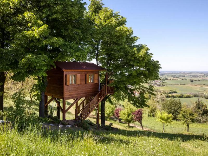 en-iyi-agac-evler-airbnben-iyi-agac-evler2_800x600