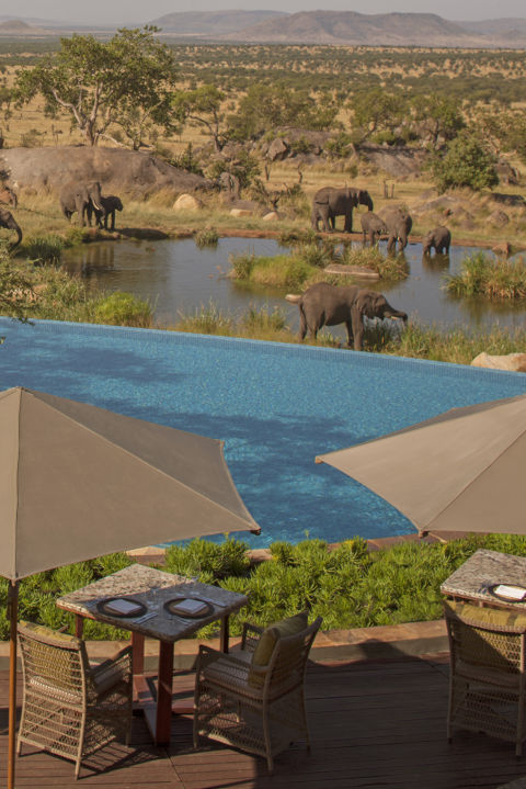 Four Seasons Safari Lodge, Serengeti Milil Parkı, Tanzanya