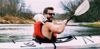 doğada kediler macera