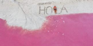 pembe lagün meksika instagram