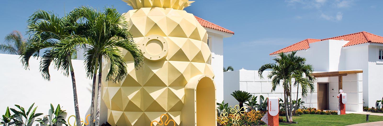 accomodations-page_pineapple_2_nhpc_1600x530