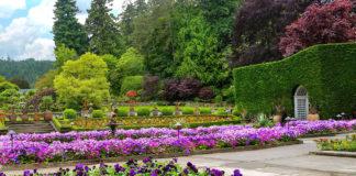 buchart çiçek bahçeleri