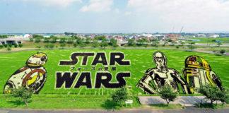 çeltik sanatı star wars