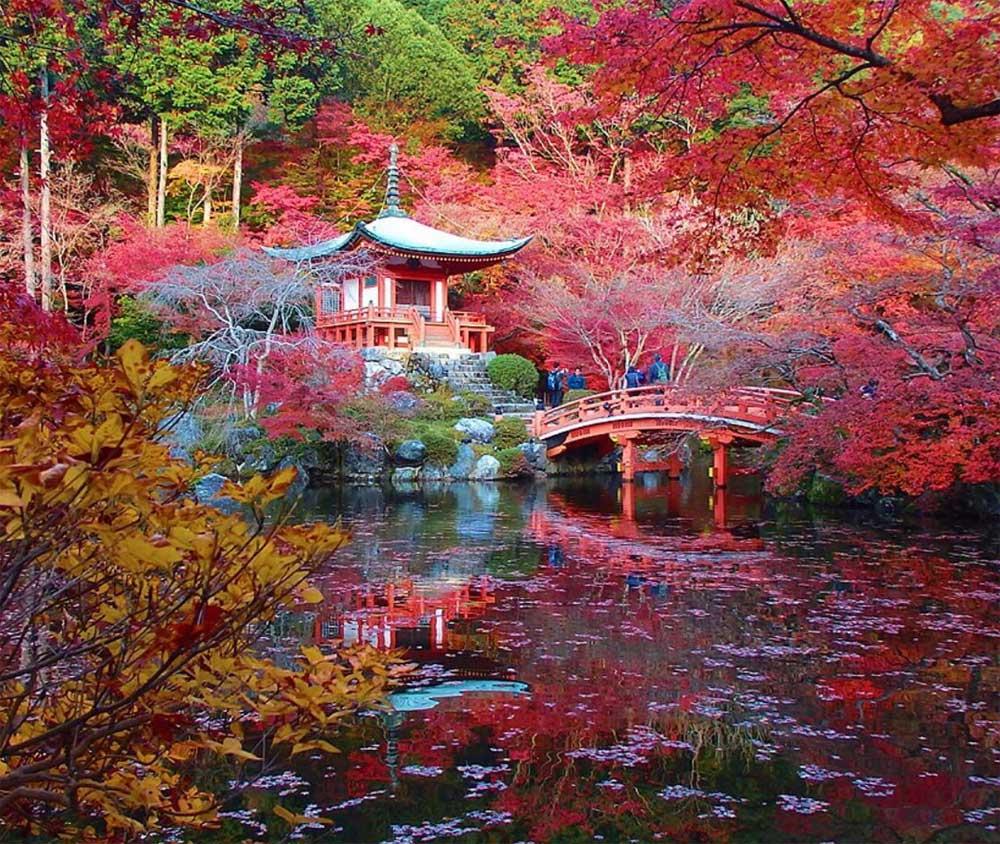 Dünyaca ünlü 13 çiçek bahçesi