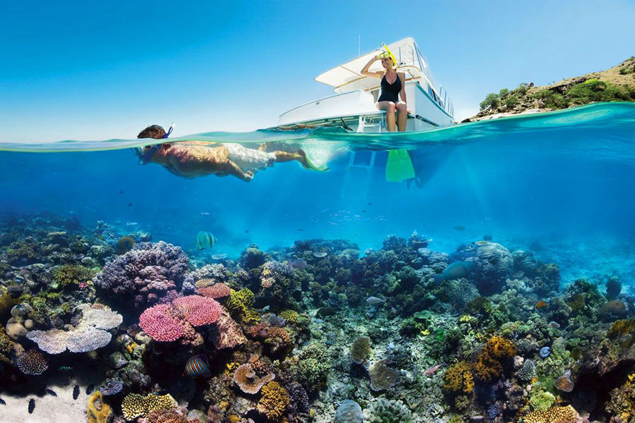 Büyük Set Resifi dalgıç deniz