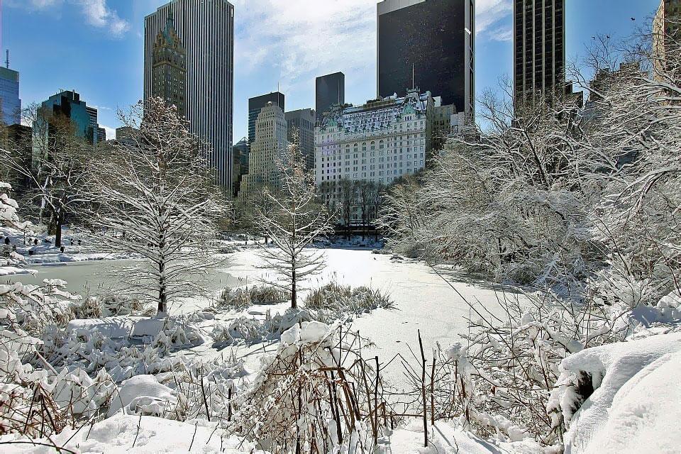 New York kar
