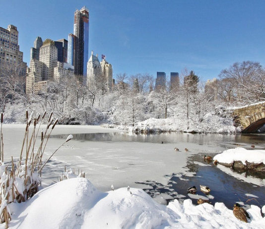 New York Central Park kar altında