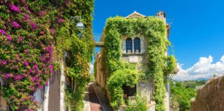 Güney Fransa Provence