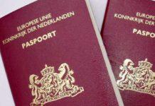 Hollanda cinsiyetsiz pasaport