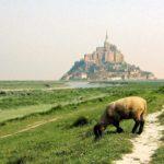 Mont Saint Michel ada koy