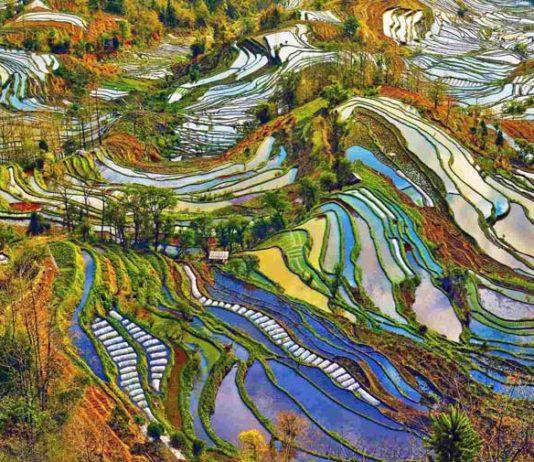 Çin doğa tabiat
