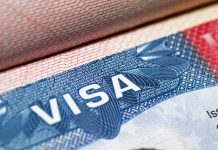 ABD vize